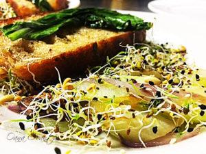 salata-gulii-4_cu-tag